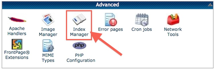 disable directory cpanel index manager